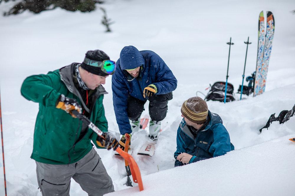 Alaska-Guide-Collective_avalanche-level-1-course.jpg