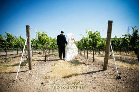 winery wedding, northern california