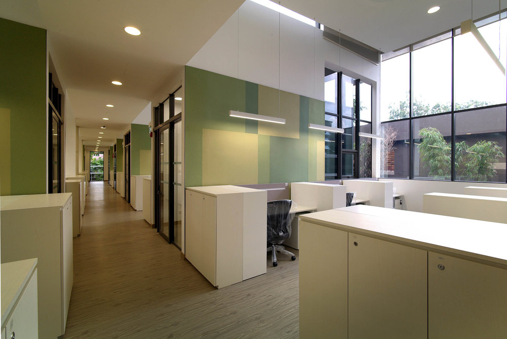 1st Storey_Green Theme Open Office.jpg