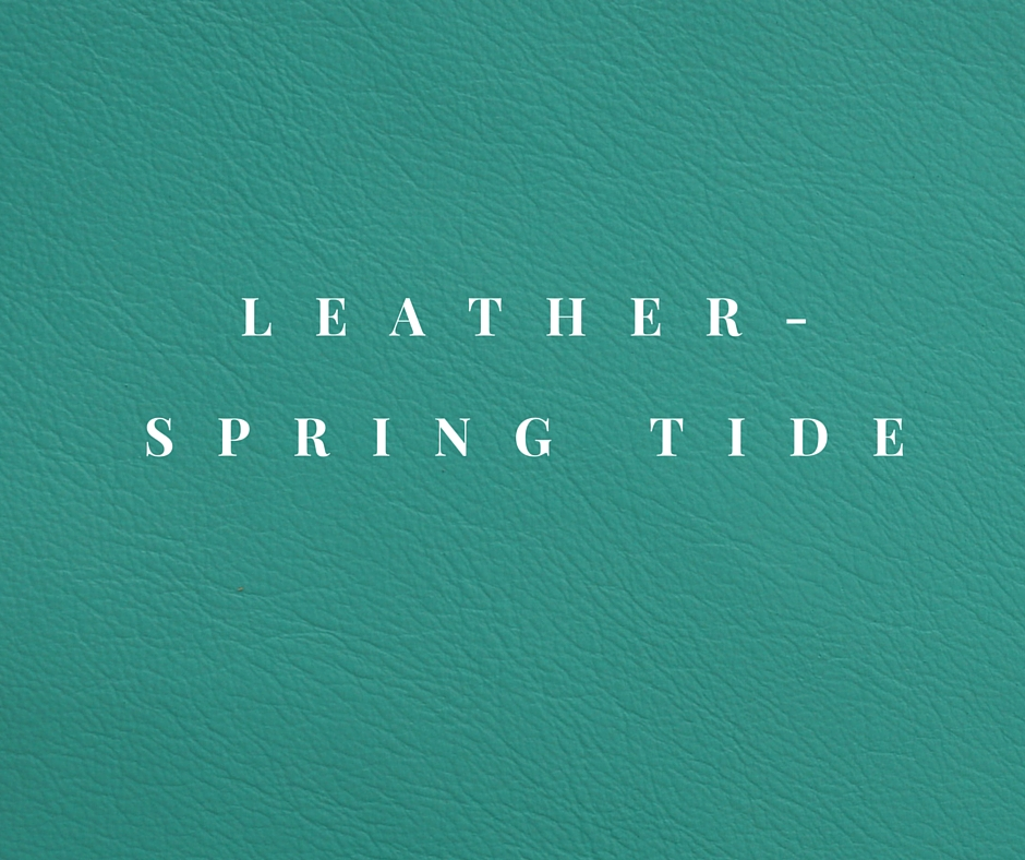 Leather- SPRING TIDE.jpg