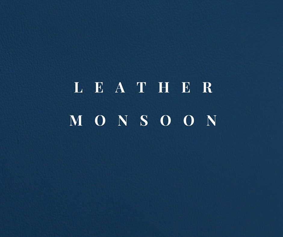 Leather MONSOON.jpg