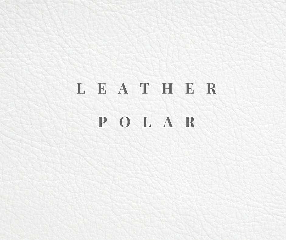 Leather- POLAR.jpg
