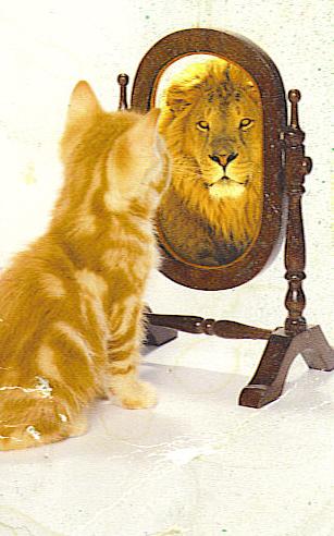 Il Gato. David Bazan (Pedro the Lion). Santa Cruz. Saturday.