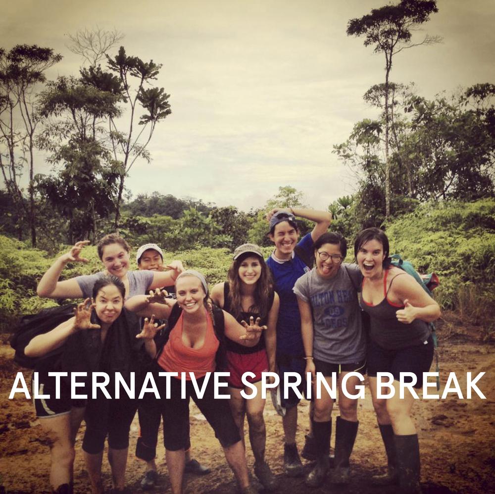 altspringbreak1revslide.jpg