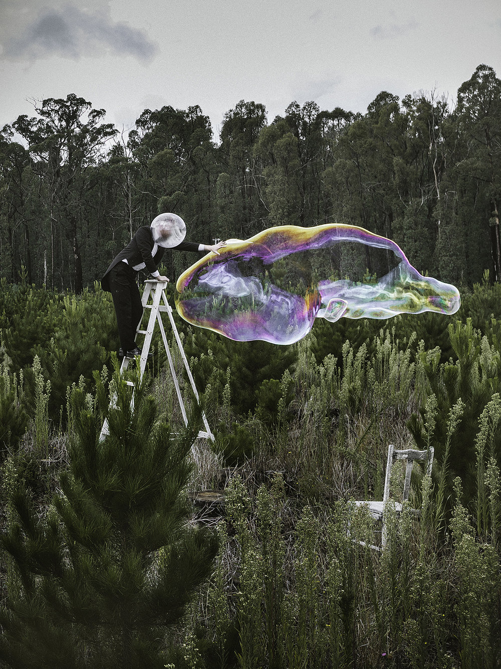 Bubbled #5, Kinglake, 2012