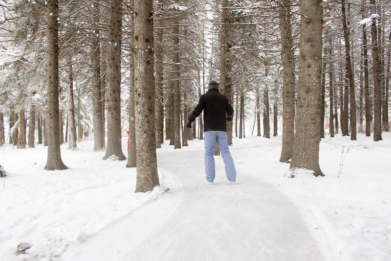 forestskateRMNP