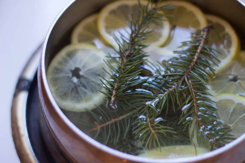 Simple stovetop simmer for spring with spruce and lemon // www.thebotanical.ca