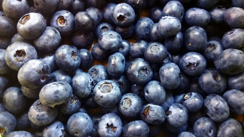Blueberries // via www.thebotanical.ca
