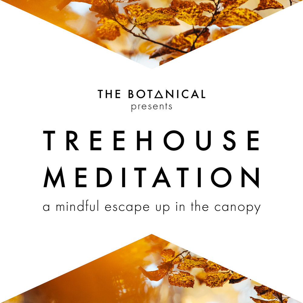 Treehouse Meditation // via thebotanical.ca