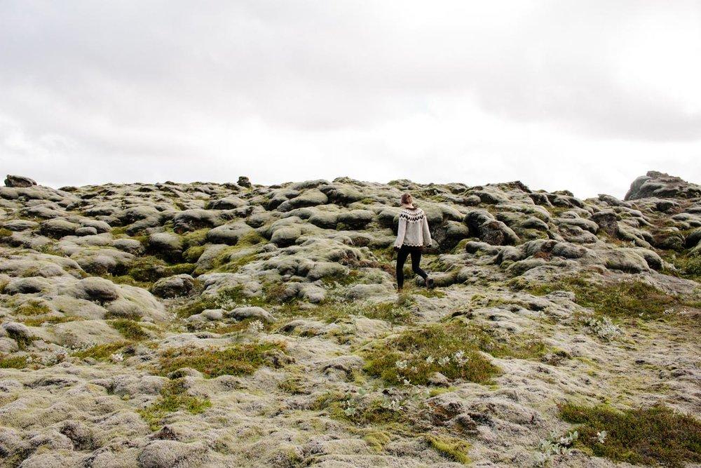 Iceland // via www.thebotanical.ca