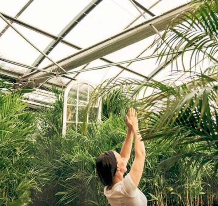 greenhouseyoga.jpg
