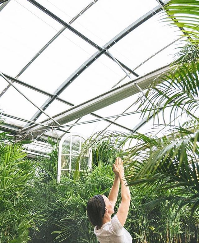 Spring is near! 🌿 I'm super excited to be returning to @shelmerdinestyle for SIX sessions of Greenhouse Yoga, kicking off this Saturday. This week's class is already sold out (!) but you can reserve your spot for any of the following weeks via the link in profile.⠀ .⠀ PS @shelmerdinestyle reopens today!⠀ 🌿🌱🌵⠀ 📷: @shelmerdinestyle