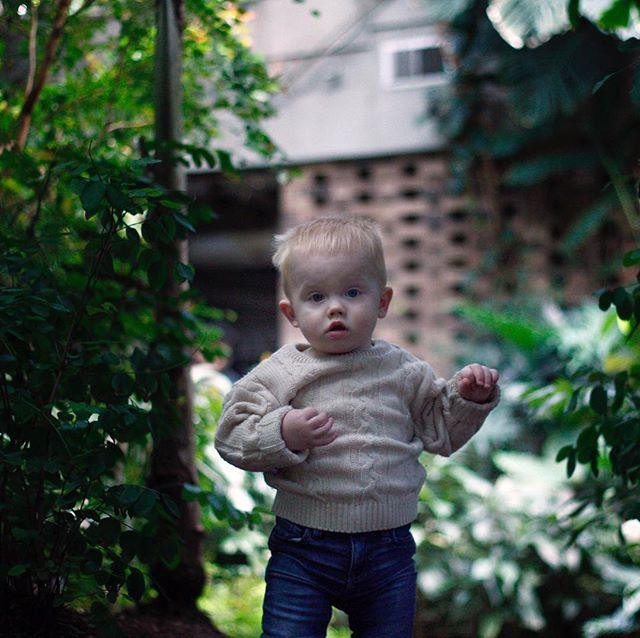 💔 . #conservatoryfarewell 📷: @winnipeghandshake