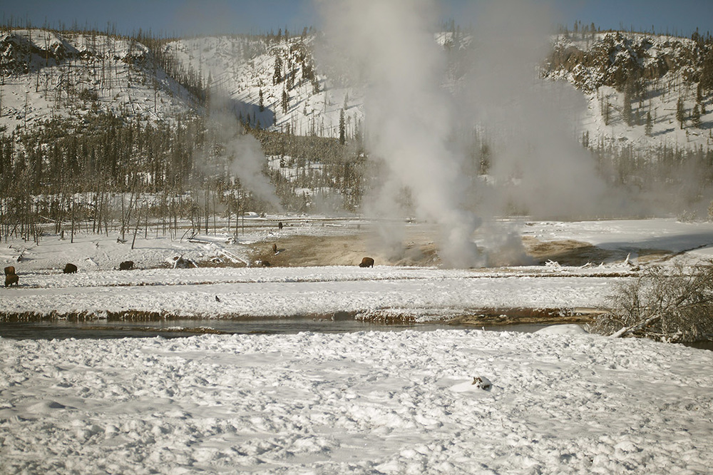 Winter on the Firehole River