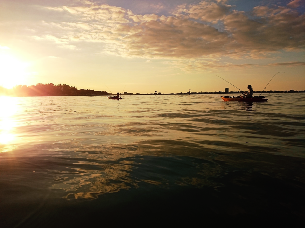 go-fish-siesta-sunset.png