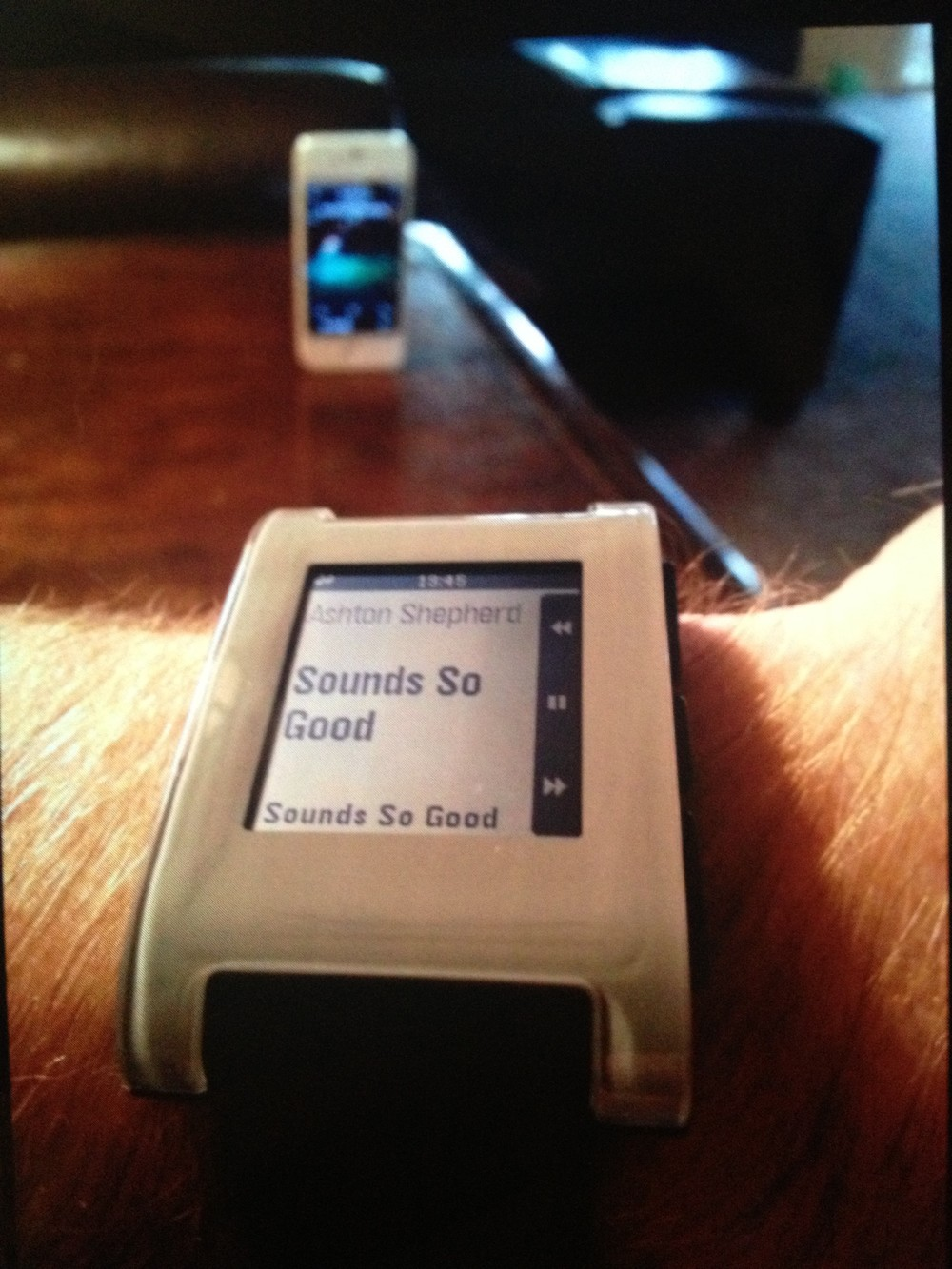 pebble-ipod-controller-ashton-shepherd-e1376283111700.jpg