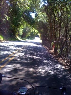 Palomares Road