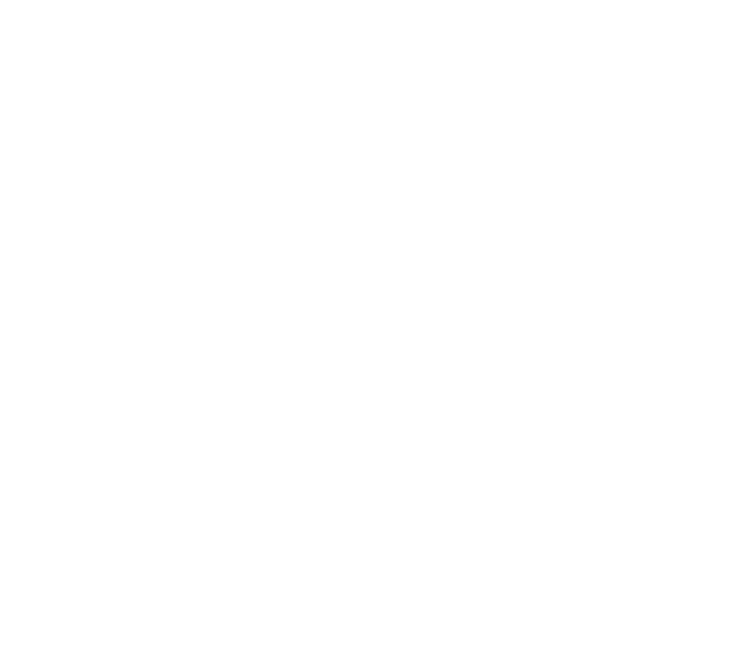 Global Surgical and Medical Support Group