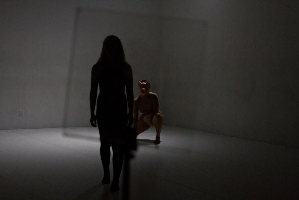Two dancers' shadows in front of glass, photo by Stephanie Crousillat. Photo from DOC Series, October 2017.