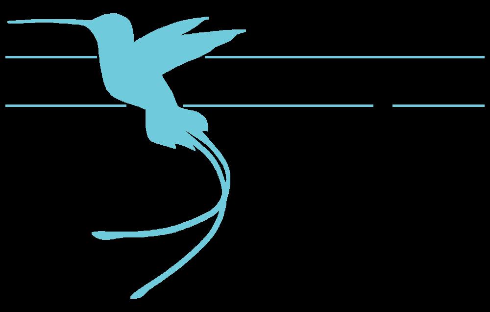 Blue Hummingbird Logo web-02.png
