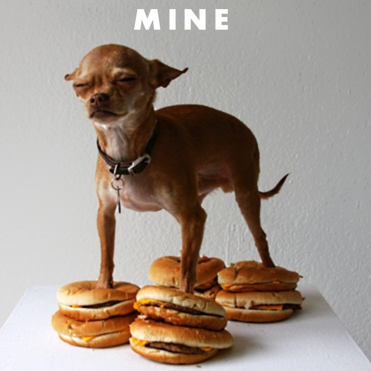 hungry1.jpg