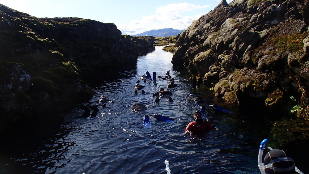 Arctic Adventures Into the Blue Snorkelling