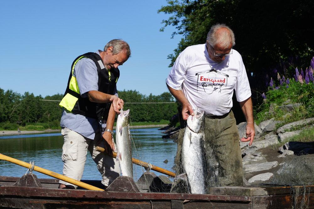 Dokumentasjon av garnfiske 2016