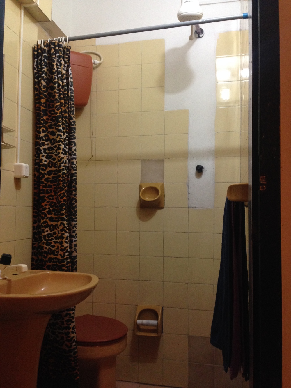 The leopard print shower curtain really set it off!
