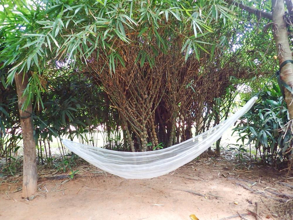 My favourite hammock