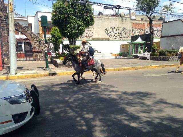 Cowboy on horseback in Xochimilco