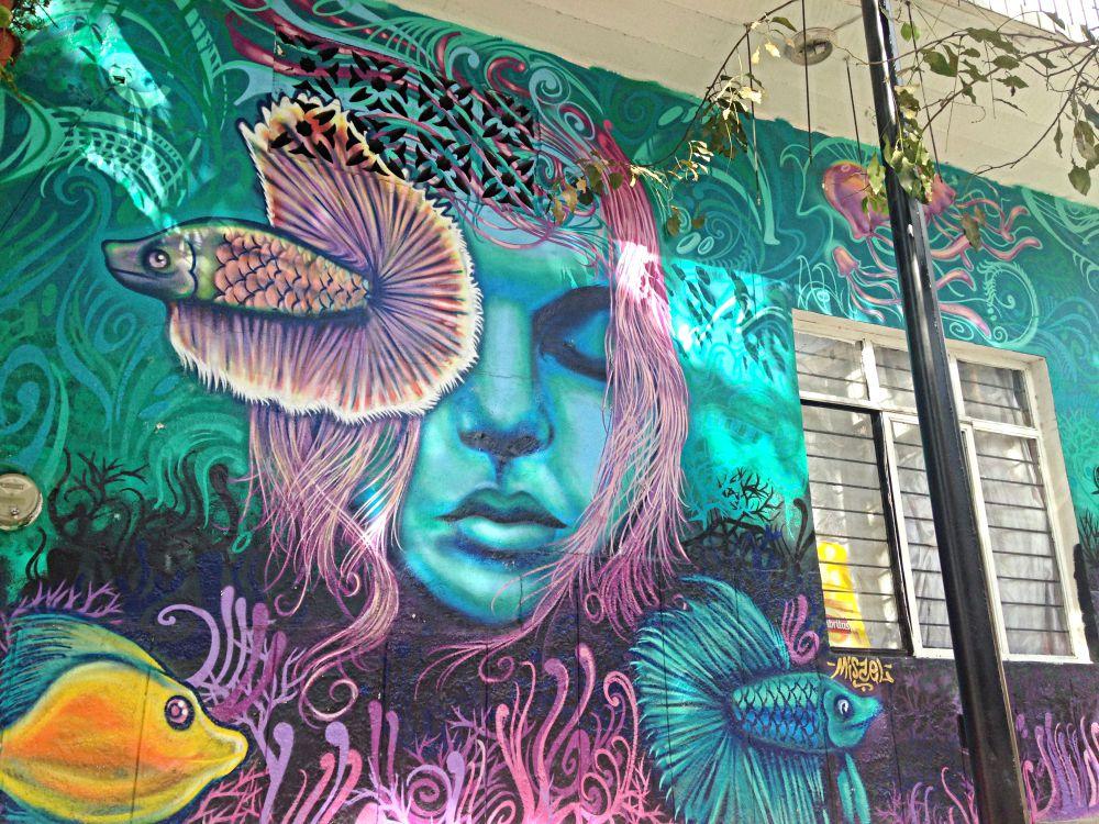 Mexican Graffiti Art