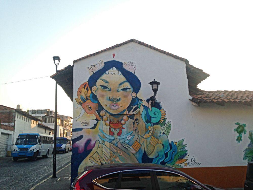 Calle Insurgentes Puerto Vallarta