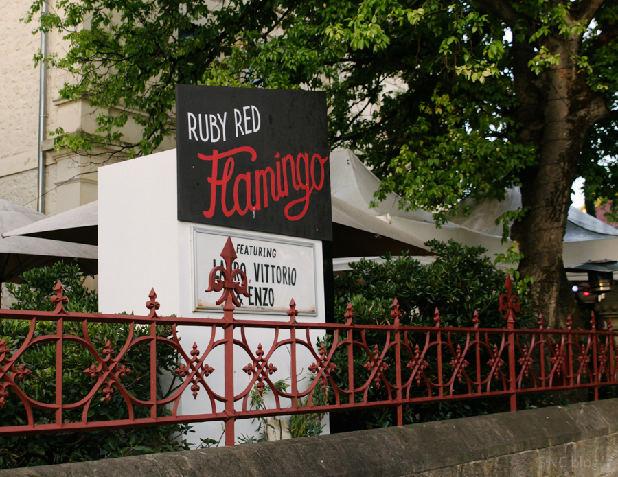 Ruby Red Flamingo: North Adelaide