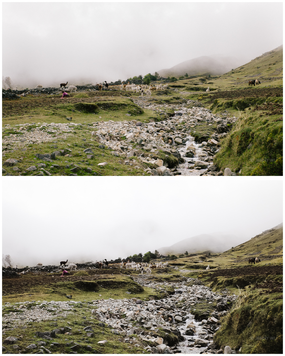 The Andes. unedited jpeg (top),  Lightroom SE3 edit (bottom)