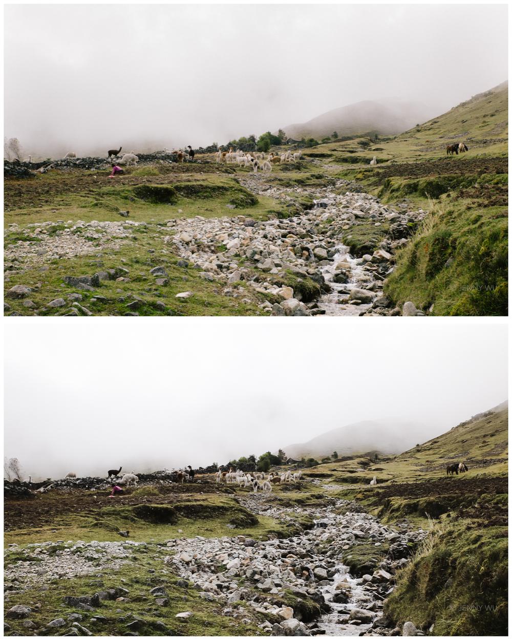 The Andes. unedited jpeg (top), Lightroom SE3 edit (bottom)