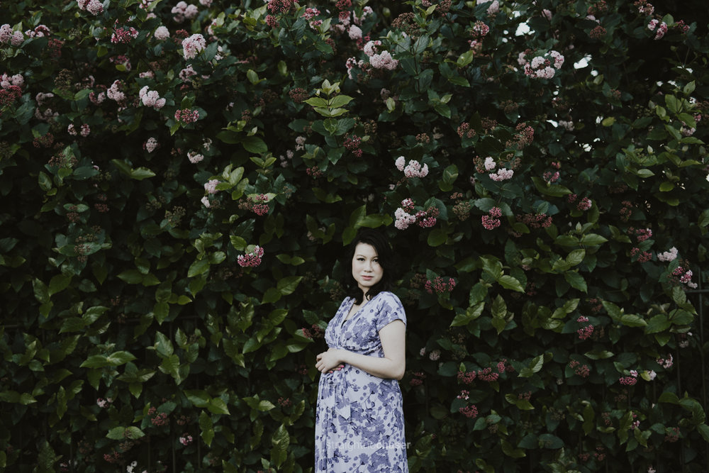 Maternity portrait session at the Sydney Botanical Gardens