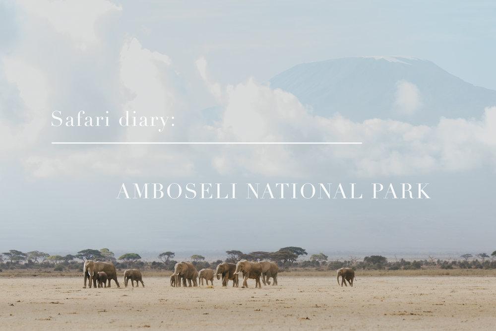 Safari Diary: Amboseli National Park, Kenya