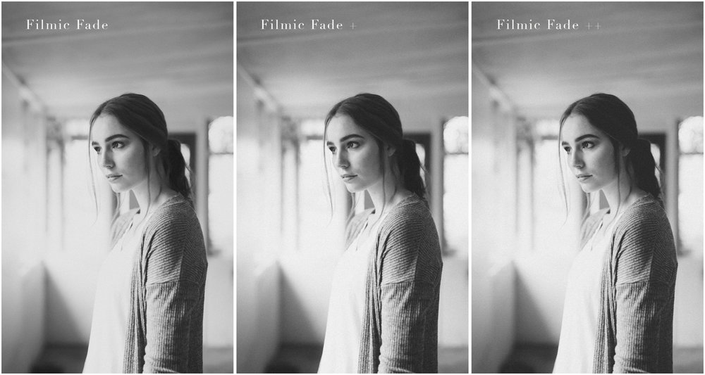 Black and White Preset Lightroom Bundle Vol 2 - StraightNoChaserPix