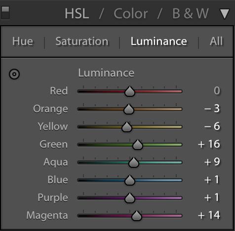 F2- LUMINANCE