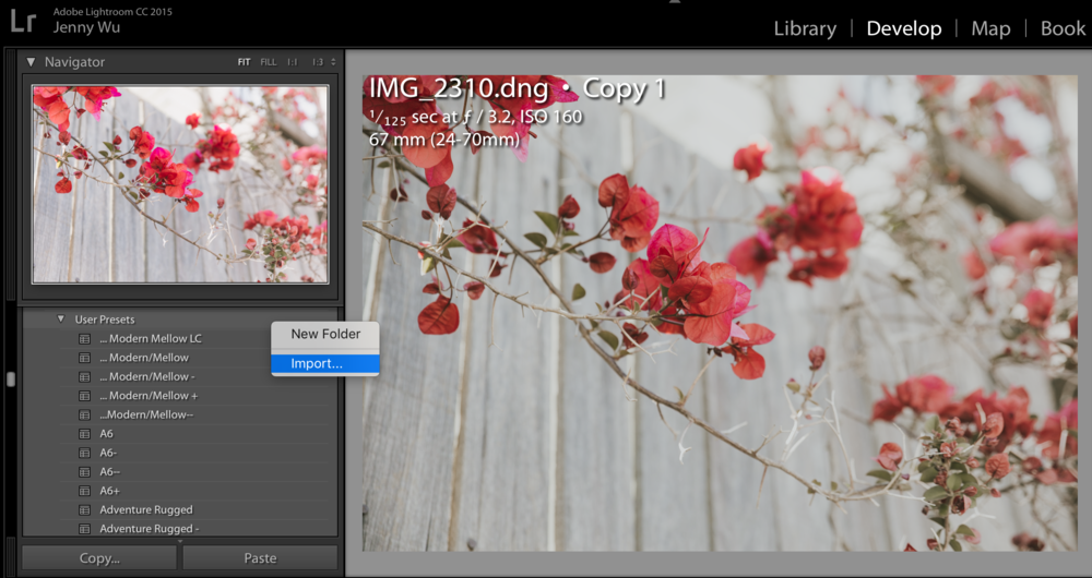 How to use and install Lightroom Presets: Part 1