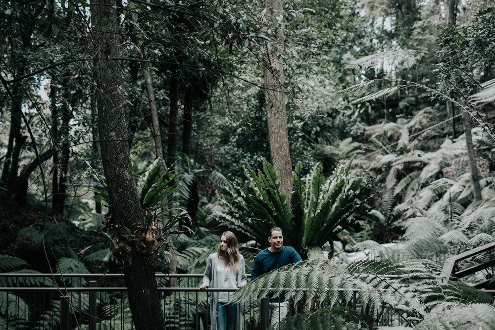 Ash & Josh: Canberra Botanical Gardens Rainforest Engagement Session