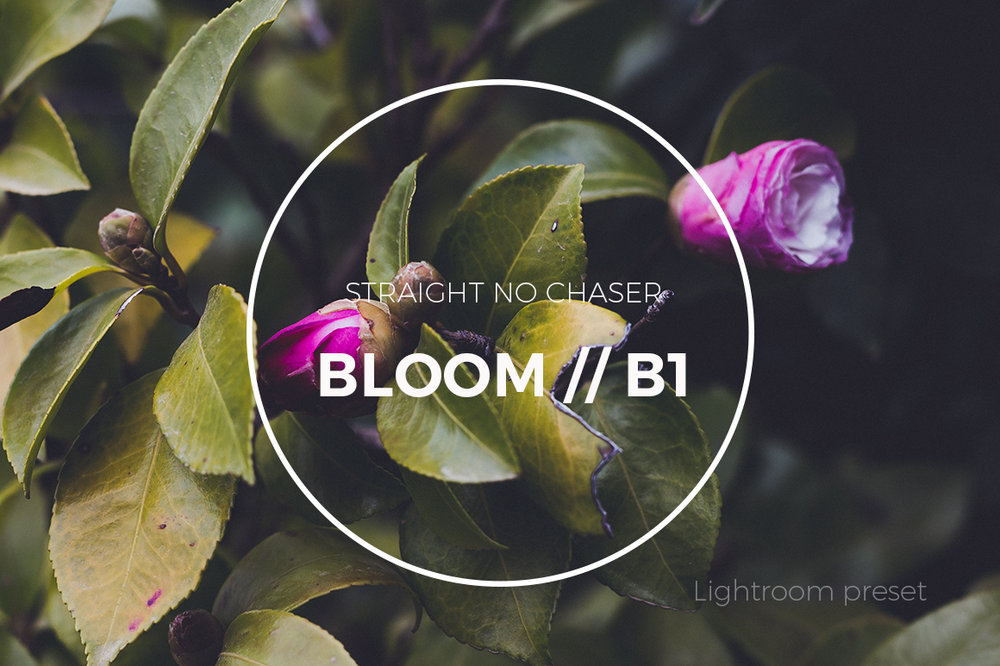 F2 (BLOOM 1) preset: How To Achieve in Lightroom