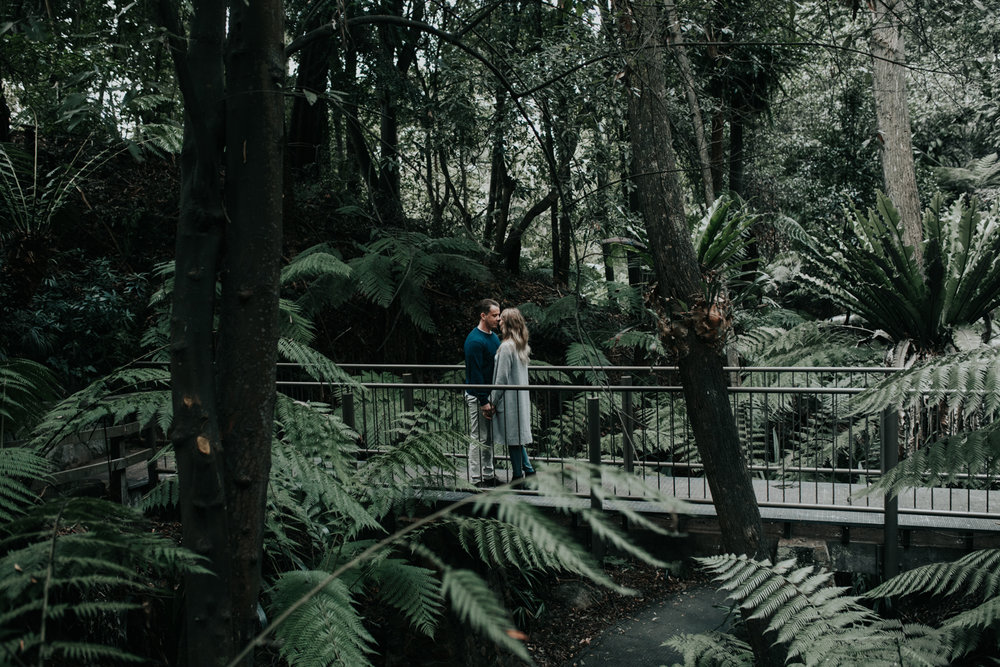 Canberra Rainforest Botanical Gardens Engagement Session