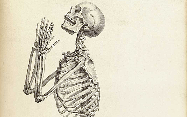 Old-Anatomy-Drawings-Praying-Skeleton.png