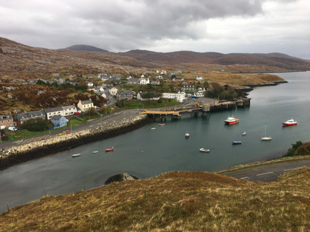 [TARBERT HARBOUR FROM THE HILL]