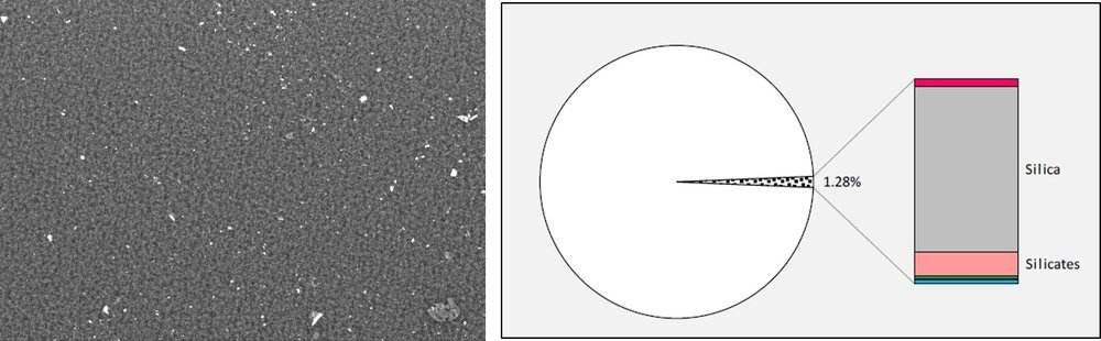 SEM image to the left show scale particles on the filter, and to the right the result of the BSA. No dangerous scale is deposited in the well.