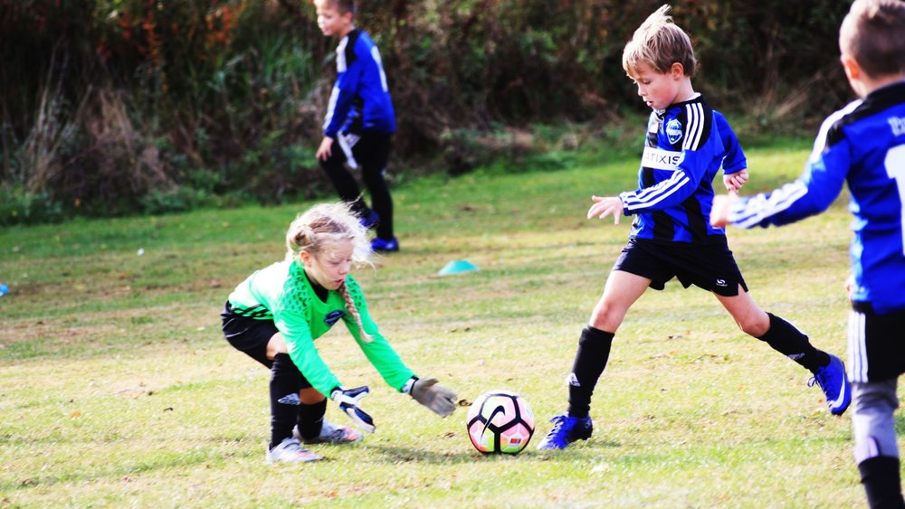 Mini Soccer BHFC October 2016.jpg