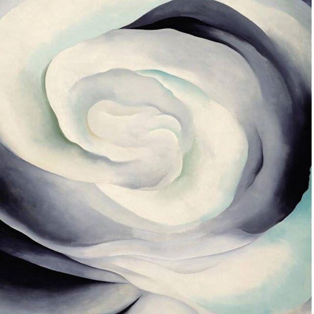 Georgia O'Keefe- Abstract white rose 1927