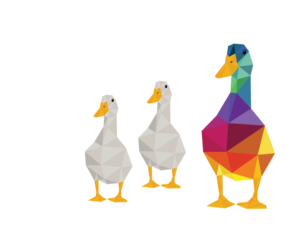 "Click for ""Duck Duck Goose"" terms."