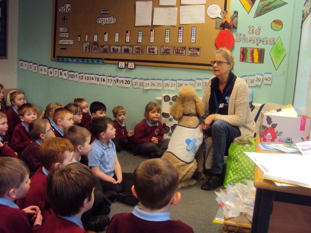 Community - We had a visit from the Blue Cross animal charity to talk to us about how to be safe around dogs and the importance of charity work in the community. The children found out why it is important for us to look after each other and be charitable. The children in Reception also had a personal visit from a specially trained dog called Sol, who works with Hillary in the community.